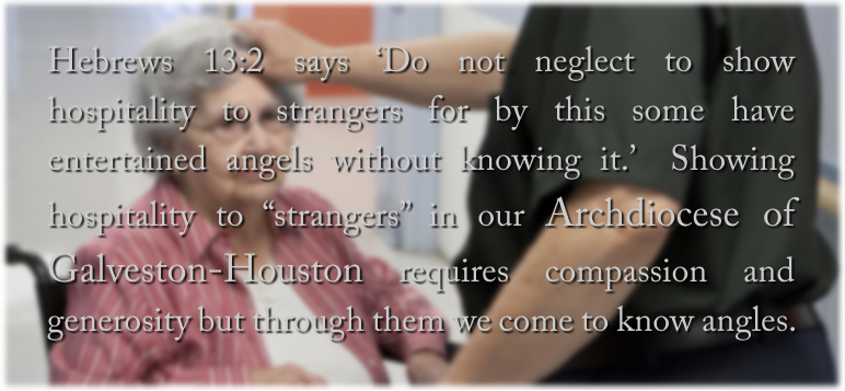 Hebrews 13:2 says 'Do not neglect to show hospitality to strangers for by this some have entertained angels without knowing it.'  Showing hospitality to 'strangers' in our Archdiocese of Galveston-Houston requires compassion and generosity but we come to know angles, to know God, through the work of these sixty DSF programs.